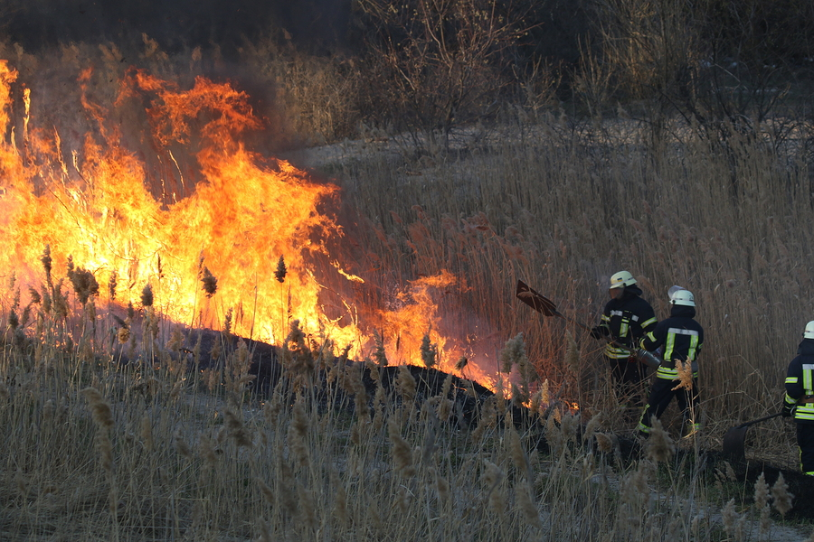 reducing the risk of wild fire on farms